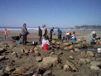 beverly-beach-oct-2012-084