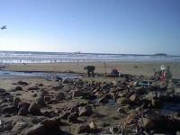 beverly-beach-oct-2012-101