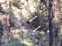 old mine cabin& mine shaft